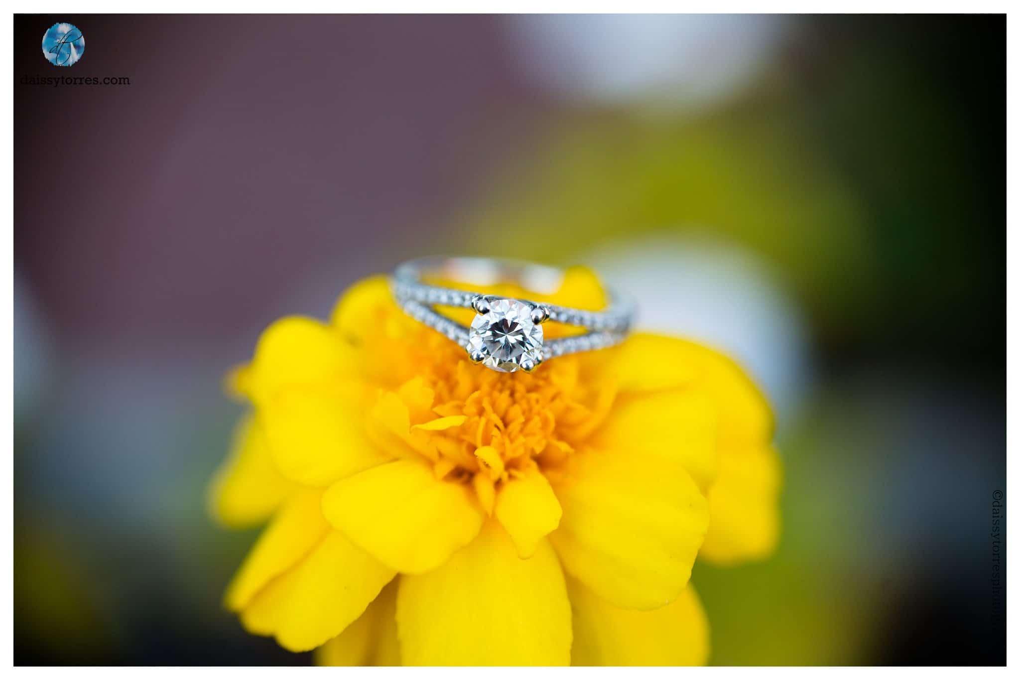 Back Bay Engagement Session - ring shot