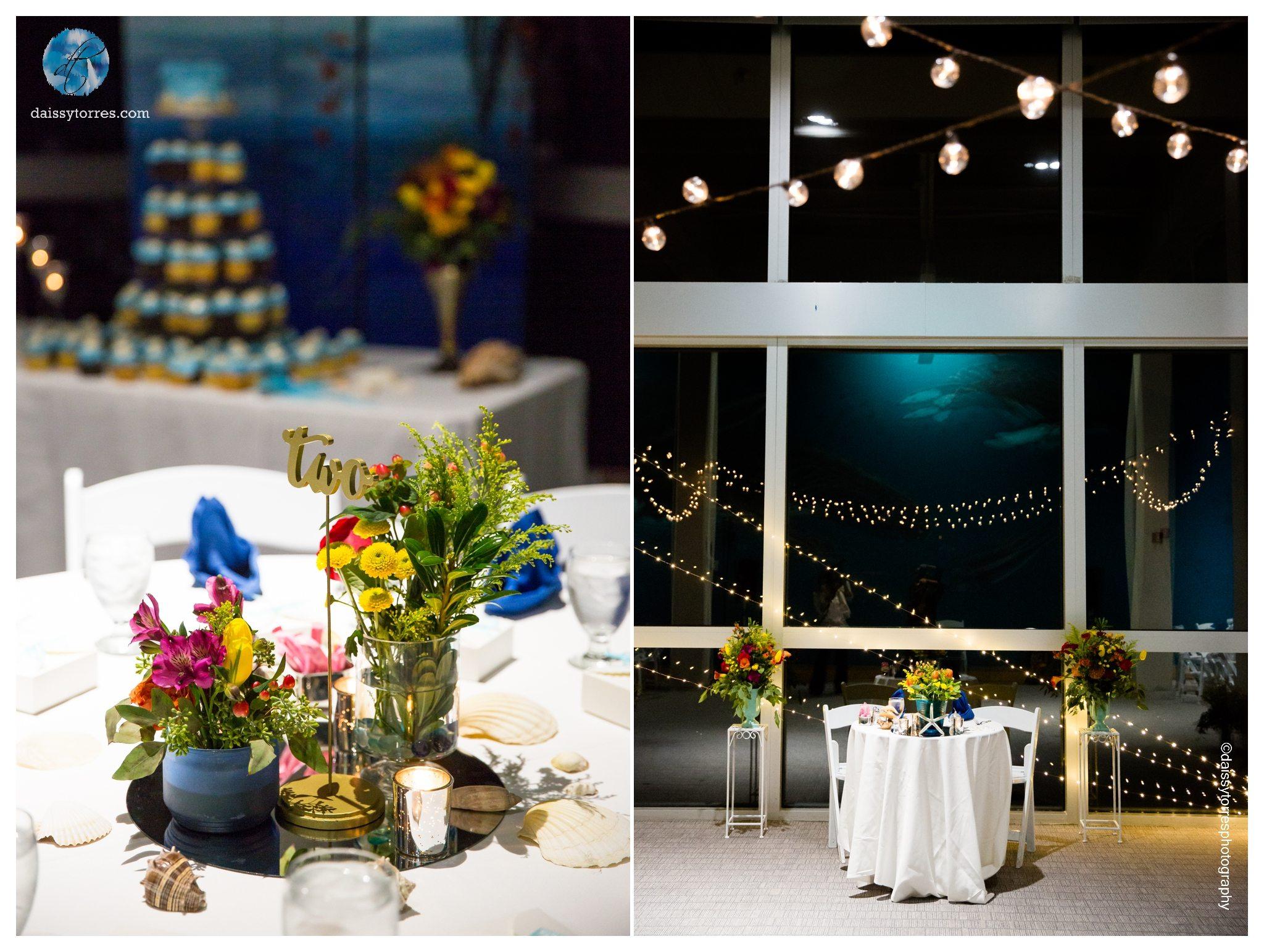 Virginia aquarium wedding 11 daissy torres photography virginia aquarium wedding wedding decorations junglespirit Choice Image