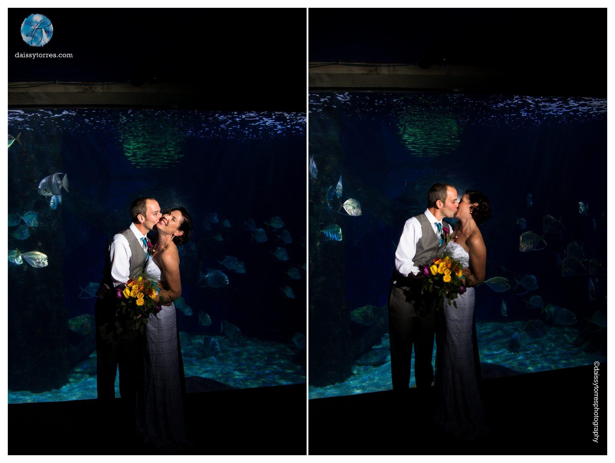 Virginia Aquarium Wedding - Couple's Portraits